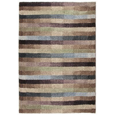 Irving Multi Area Rug Rug Size: 53 x 76