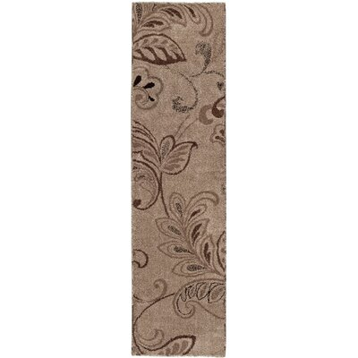 Kazoo Fandango Beach House Brown/Black Area Rug Rug Size: Runner 2'3