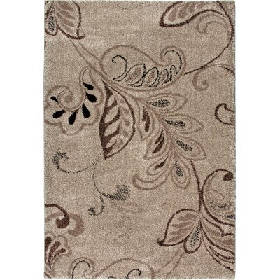 Kazoo Fandango Beach House Brown/Black Area Rug Rug Size: 53 x 76