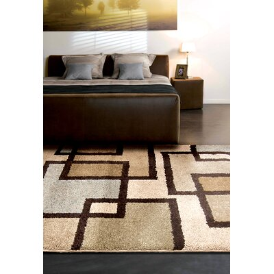 Honoray Huffing Brown/Gray Area Rug Rug Size: 53 x 76