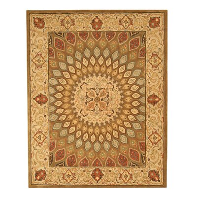 Hand-Tufted Brown Area Rug Rug Size: Rectangle 76 x 96