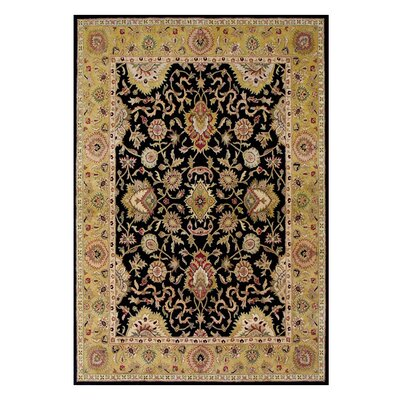 Hand-Tufted Black / Gold Area Rug Rug Size: 5 x 8