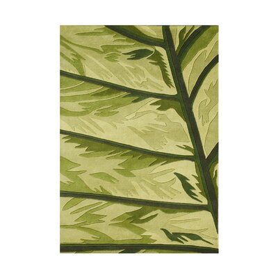 Salem Hand-Tufted Lime Green Area Rug Rug Size: Rectangle 5 x 8