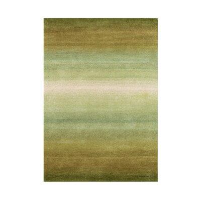 Hayden Hand-Tufted Oasis Green Area Rug Rug Size: 5 x 8