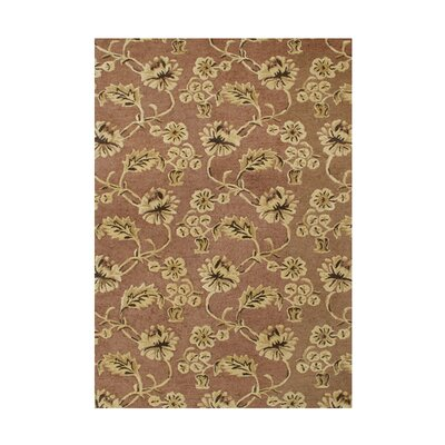 De Ayllon Hand-Tufted Chocolate Brown Area Rug Rug Size: 5 x 8
