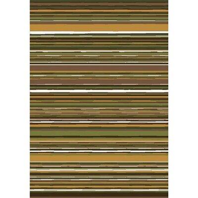 Green Area Rug Rug Size: 54 x 78