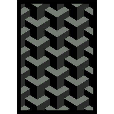 Black Area Rug Rug Size: 310 x 54