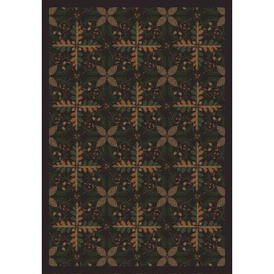 Dark Timber Area Rug Rug Size: 54 x 78