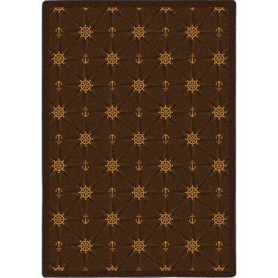 Chocolate Area Rug Rug Size: 310 x 54