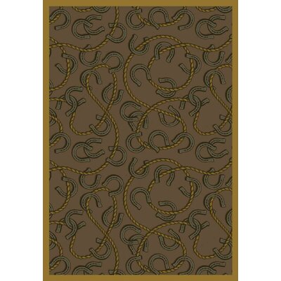Brown Area Rug Rug Size: 54 x 78