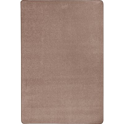 Taupe Area Rug Rug Size: Rectangle 6 x 9