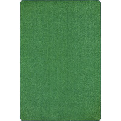 Green Area Rug Rug Size: 12 x 8