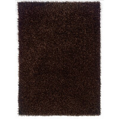 Hand-Woven Brown Area Rug Rug Size: Rectangle 5 x 7