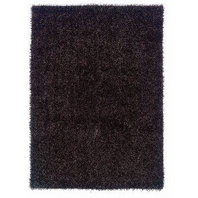 Hand-Woven Black Area Rug Rug Size: Rectangle 5 x 7