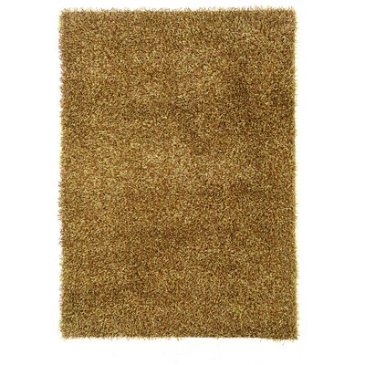 Hand-Tufted Brown Area Rug Rug Size: 110 x 24