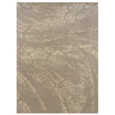 Hand-Tufted Gray/Beige Area Rug Rug Size: Rectangle 5 x 7