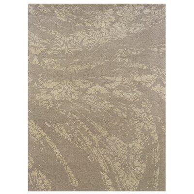 Hand-Tufted Gray/Light Gray Area Rug Rug Size: 110 x 210