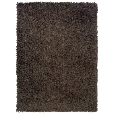 Hand-Woven Brown Area Rug Rug Size: 5' x 7'