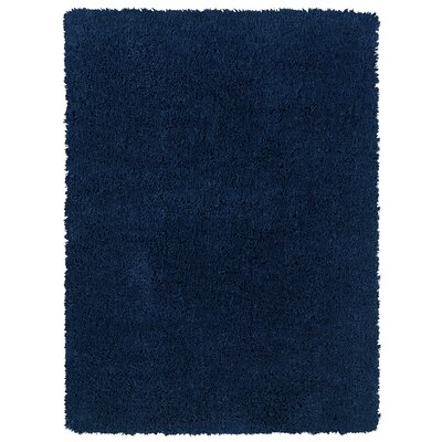 Hand-Woven Navy Area Rug Rug Size: 5 x 7