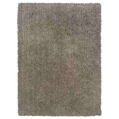 Hand-Woven Gray Area Rug Rug Size: Rectangle 1'10