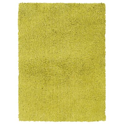 Hand-Woven Endive Green Area Rug Rug Size: Rectangle 110 x 210