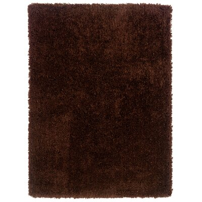 Hand-Woven Chocolate Area Rug Rug Size: Rectangle 110 x 210