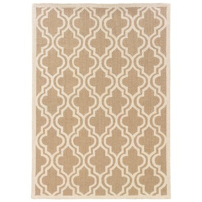 Hand-Hooked Brown/Ivory Area Rug Rug Size: Rectangle 5 x 7