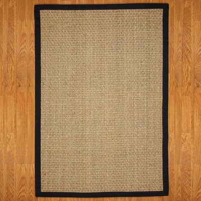 Alland Contemporary Hand-Woven Brown Area Rug Rug Size: Rectangle 9' x 12'