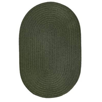 Handmade Dark Sage Indoor/Outdoor Area Rug Rug Size: Oval 2 x 4