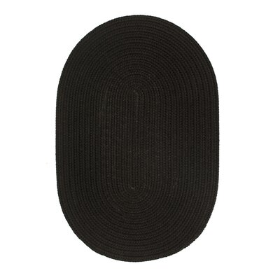 Handmade Black Indoor/Outdoor Area Rug Rug Size: Oval 4 x 6