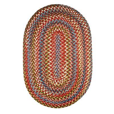 Handmade Tawny Port Indoor/Outdoor Area Rug Rug Size: Runner 2 x 6