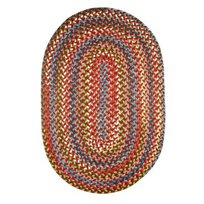 Handmade Tawny Port Indoor/Outdoor Area Rug Rug Size: Oval 2 x 4