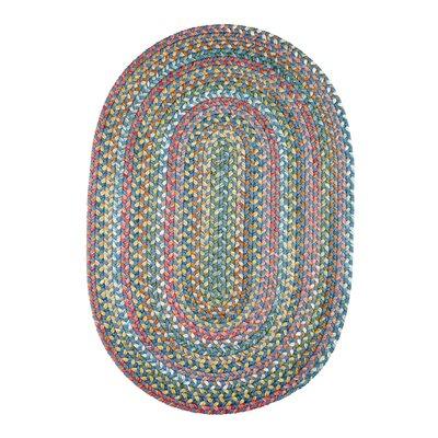 Handmade Sapphire Indoor/Outdoor Area Rug Rug Size: Runner 2 x 8