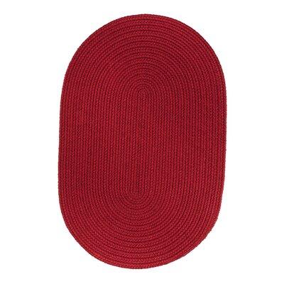 Handmade Brilliant Red Indoor/Outdoor Area Rug Rug Size: 3 x 5
