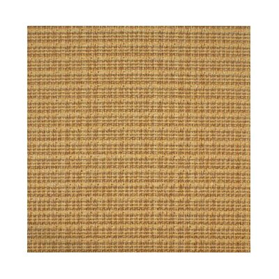 Sisal Area Rug Rug Size: Rectangle 6 x 9