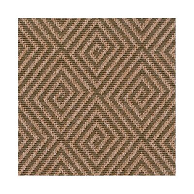 Indoor/Outdoor Area Rug Rug Size: Rectangle 6 x 9