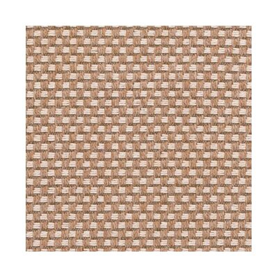 Straw Area Rug Rug Size: Rectangle 9 x 12
