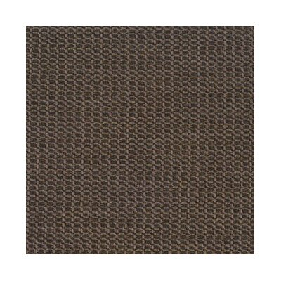 Teak Area Rug Rug Size: Rectangle 9 x 12