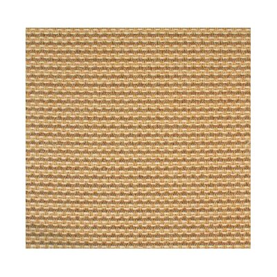 Straw Area Rug Rug Size: Rectangle 8 x 10