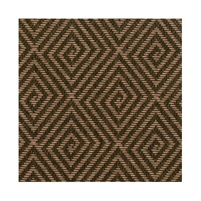 Teak Indoor/Outdoor Area Rug Rug Size: 6 x 9