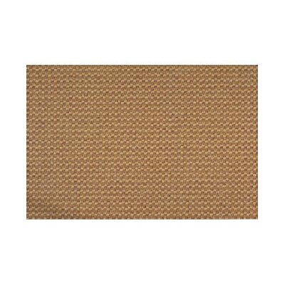 Tan Area Rug Rug Size: Rectangle 6 x 9