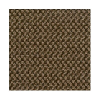 Chocolate Area Rug Rug Size: Rectangle 6 x 9