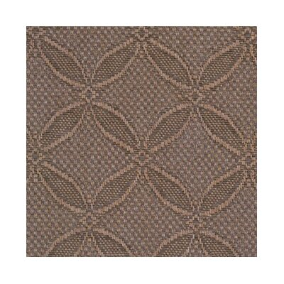 Almond Area Rug Rug Size: Rectangle 9' x 12'