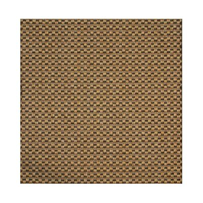 Brown Area Rug Rug Size: 6' x 9'