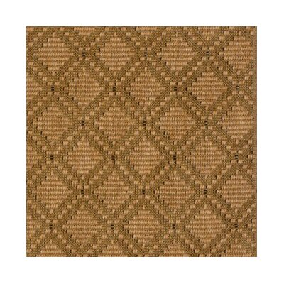 Bronze Area Rug Rug Size: Rectangle 8 x 10
