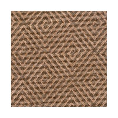 Nutmeg Area Rug Rug Size: Rectangle 8 x 10