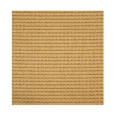 Yellow Area Rug Rug Size: Rectangle 5 x 8