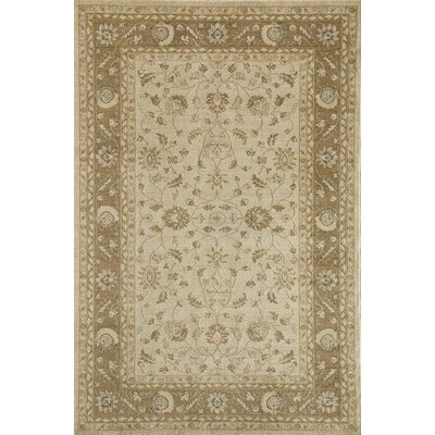 Cream Area Rug Rug Size: 53 x 710