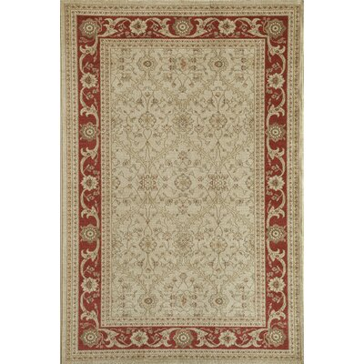 Cream Area Rug Rug Size: 710 x 1010