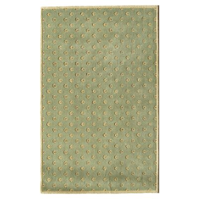 Hand-Woven Green Area Rug Rug Size: 16 x 23
